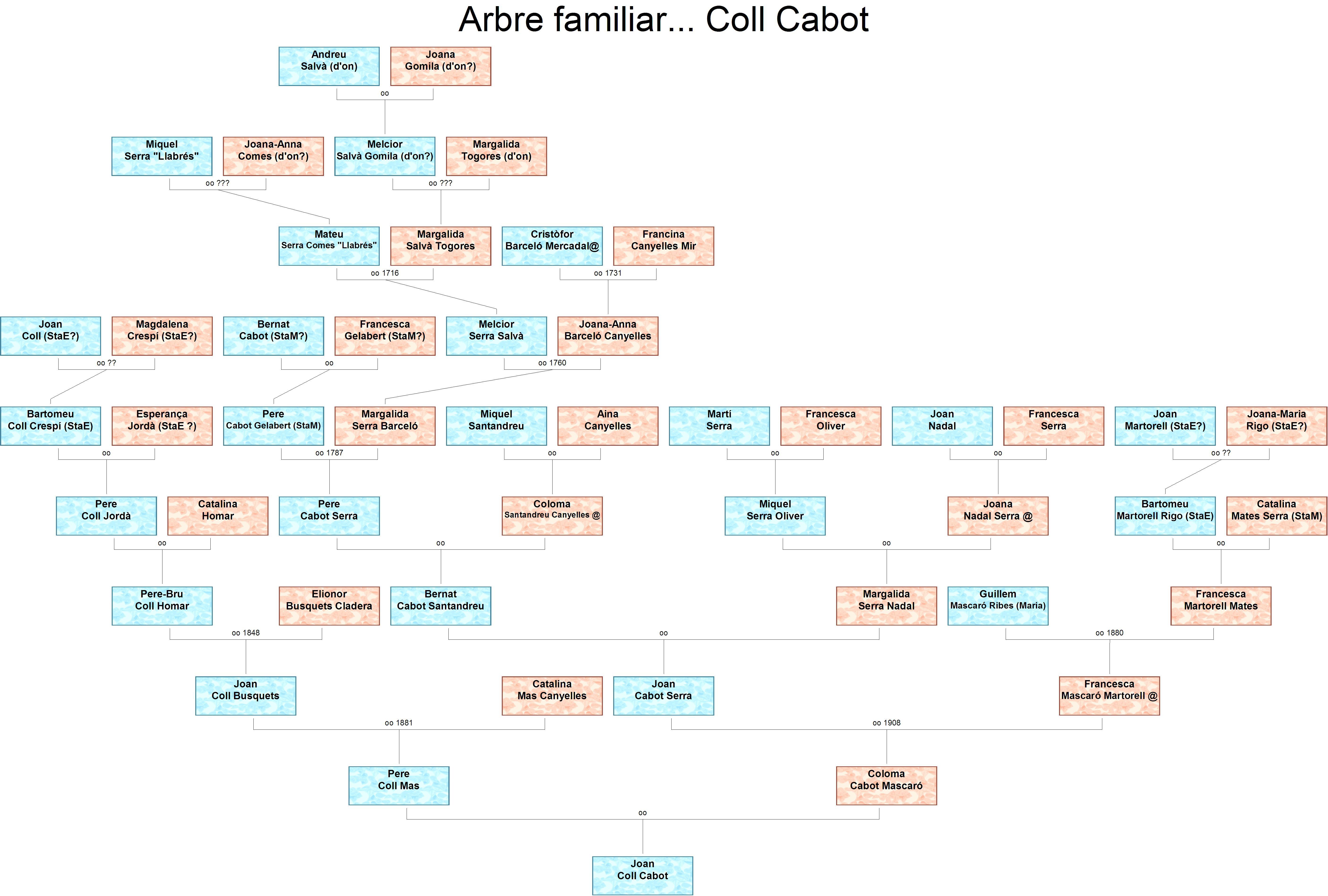 Arbre familiar Coll Cabot SC
